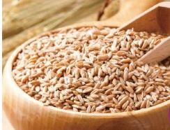 乾燥スーパー大麦